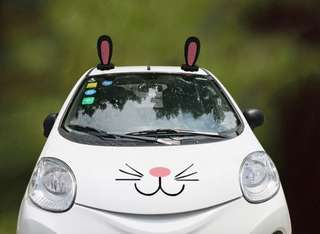 "Universal Car Roof ""Rabbit Ears"" Novelty Decoration"