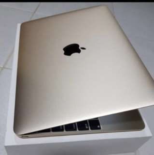 Macbook Gold 12-Inch with Retina Display (Early 2015)
