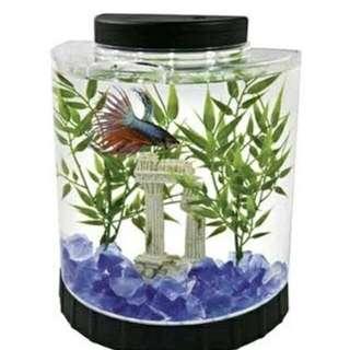 Tetra LED Fish Tank 1.1 Gallon