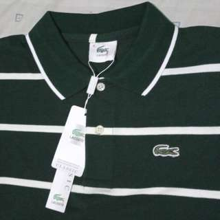 Lacoste polo shirt replica