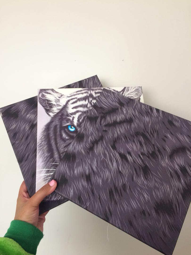Tiger Print Canvas (set of 3)