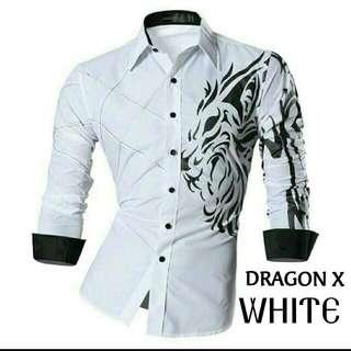 Dragon x white