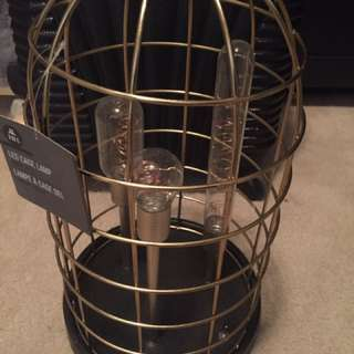 Rustic lightbulb cage lamp