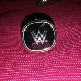 WWE Hall of Fame 2015 replica ring