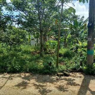 Di jual tanah di perum Puspitek pagedangan Tangerang