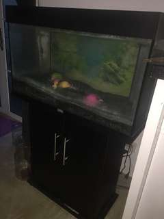Fish tank with custom cabinets
