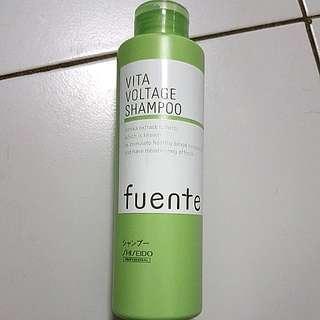BN shisheido shampoo