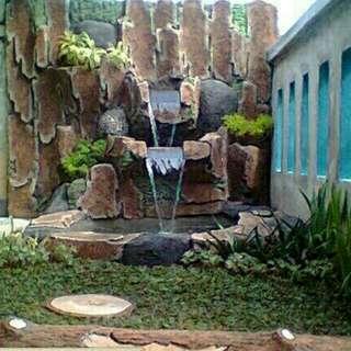 Rumput gajah mini/pemasangan taman