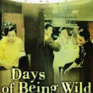 Days of being wild 阿飞正传