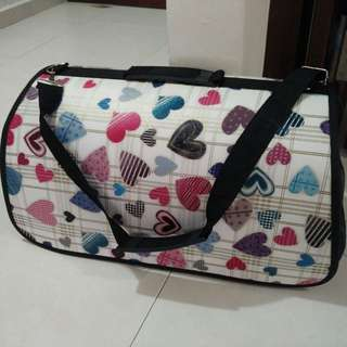 Dog cat carrier for small pets