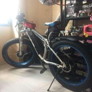 Electric Fat Bike by Rich Bit