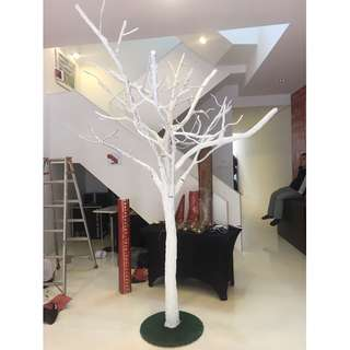 White Artificial Bare Tree for Rent