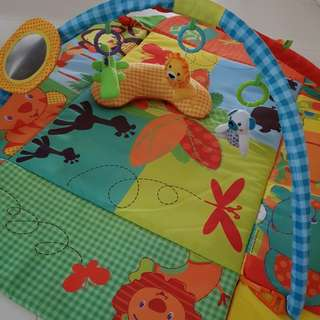 Fisher Price Animal Play Gym