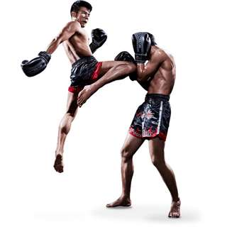 My FITNESS Lah (Muay Thai classes and Personal Training)