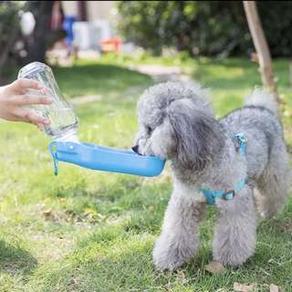Pet outdoor drinking bottle