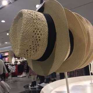 Topi fedora topi pantai