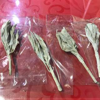 White sage single stick