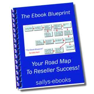 The eBook Blueprint: Your Roadmap To Reseller Success eBook