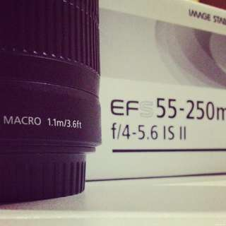 Canon EFS 55-250mm F4-5.6IS II