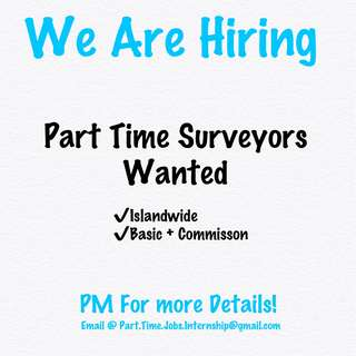 Part Time Jobs Surveyors