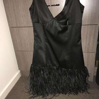 Almost New Feather Dress By Wish