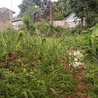 150 sqm Lot for Sale (rights)