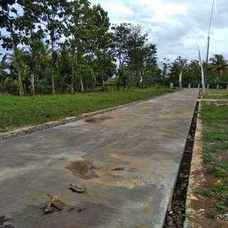 Tanah Kavling di Ciampea Bogor