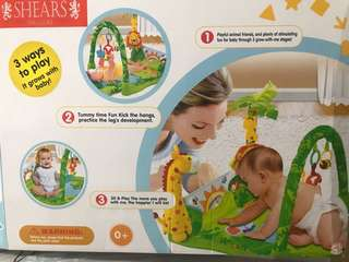 Shears Baby Playgym