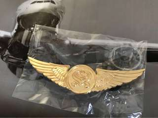 **Collectables**Hainan Airlines aircrew wing (**收藏品** 海南航空 飞行员徽章)