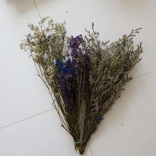 Dried flowers caspia and baby's breath bouquet fillers loose