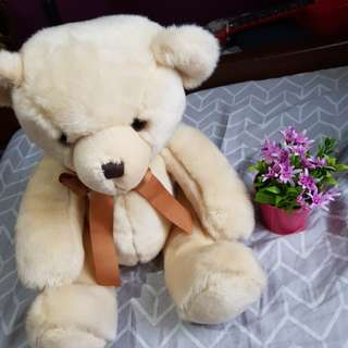 Toy Factory's Teddy Bear