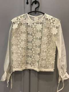 White Blouse flower