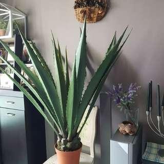 Artificial Gigantic plant