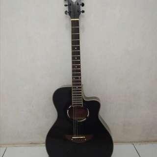 Jual Gitar Akustik APX 500