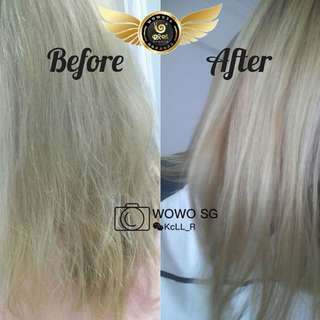 Dry hair treatment wowo pure ginger shampoo