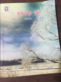 Chinese Composition Books for Secondary levels