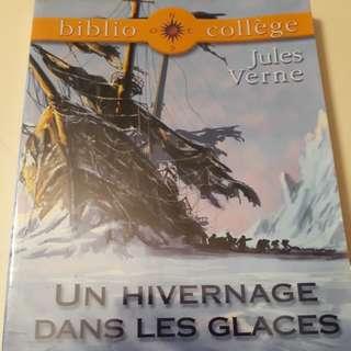 Un hivernage dans les glaces - Jules Vernes (French)