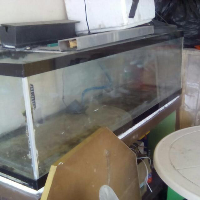 aquarium complete set