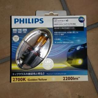 Philips LED H8/H11/H16 Fog light bulb