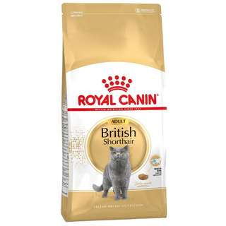 Royal Canin british short hair 10kg