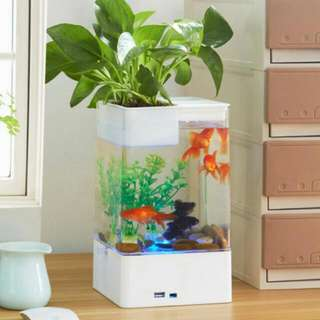 [My Fun Fish Tank] Innovative Mess-Free Aquarium that Cleans Itself Like Magic/Education Toys/Kids
