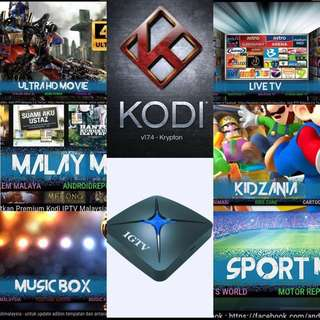 One Time Payment IPTV for Singapore/Malay IGTV Android Box Best Content Box