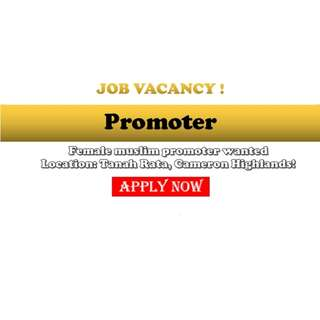 Job Vacancy:  《Muslim Female Promoter》 X 1