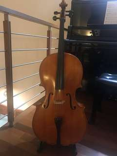 Samuel Eastman Cello VC100 (1/2 size)