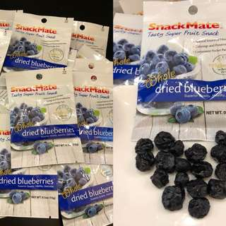 美國SnackMate 原粒藍莓