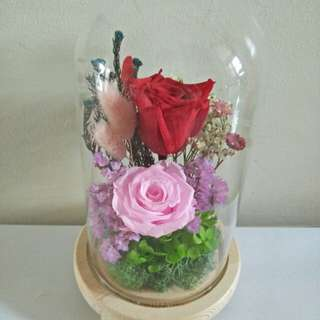 Eternal rose in glass jar with light