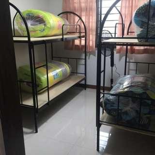 Room sharing Punggol