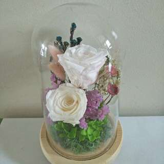 White rose inside the glass jar with light