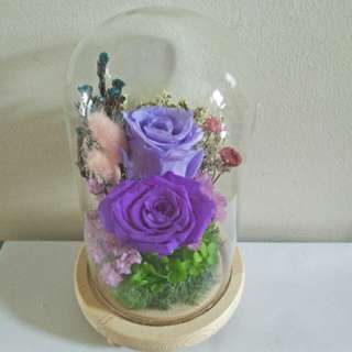 Eternal flower in glass jar with light