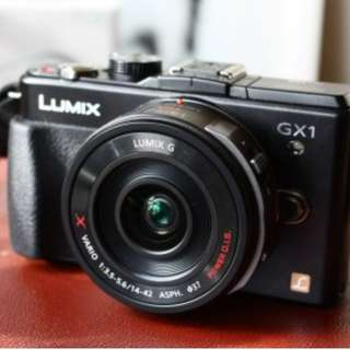 Panasonic Lumix GX1 with extra battery
